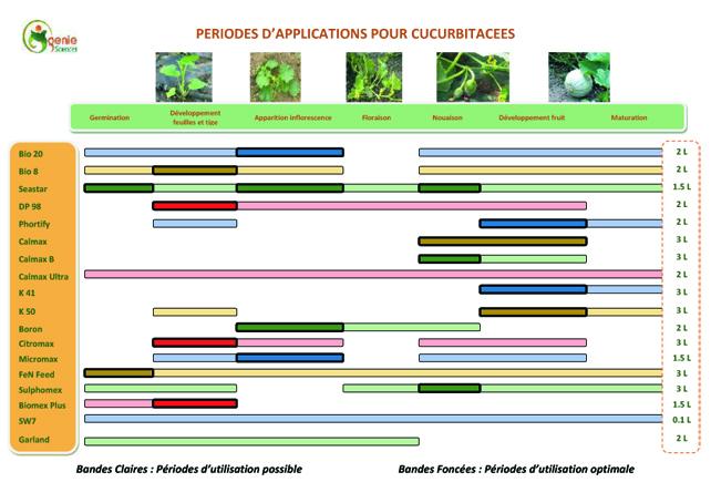 Fertilisation Cucurbitacées
